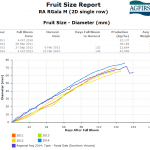 Managing orchards for fruit size