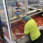 Reducing food safety risk in pack houses