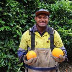 Pacific Island workers good for business and families