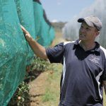 Determination to stop hail damage grows netting business