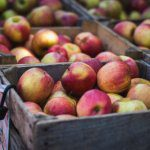 Positive consumer trends for apples and pears