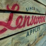 Lenswood appoints new CEO