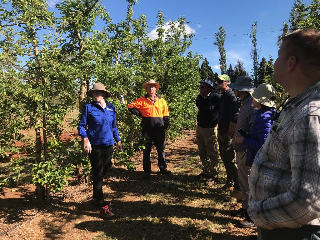 future orchards walks spring key messages
