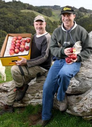 Greens sell Lenswood orchard for $1.2 million