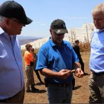 State and Federal Governments meet with APAL, growers as bushfire rebuild begins