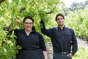 My harvest: Ceravolo Orchards, South Australia