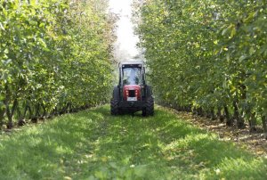 Agriculture Resilience and Recovery Program funding
