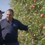 My Harvest – Michael Napoleone, Red Rich Fruits