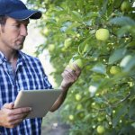 Scholarships available for young Victorian growers