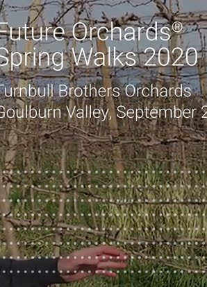 Future Orchards® Goulburn Valley update – Turnbull Orchards