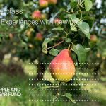 Pear Masterclass Session 2 – Experiences with new pear varieties