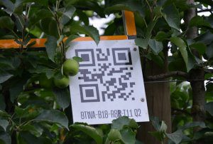 Free tech audits for Victorian growers