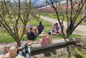 Recap: Spring orchard walks and Pear Masterclass