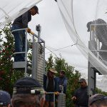 Harvest assist platforms: What'sout there?