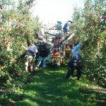 Optimising your harvest outcome