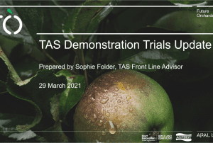 Future Orchards® – Tasmanian demonstration trial updates