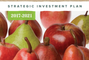 Hort Innovation begins reviews of Strategic Investment Plans