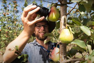 What is the ideal 'smart orchard' of the future?