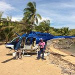 Fruit Fly success in the Torres Strait