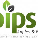 Cultivating healthy soil: a PIPS3 project update