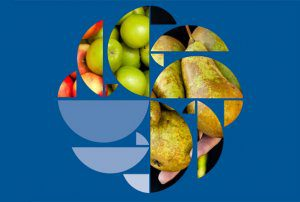 NRS report shows good compliance and industry standard for pome fruit